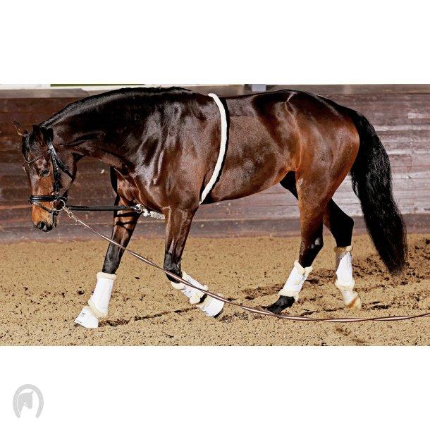 Horse Guard Soft longeringshjælp